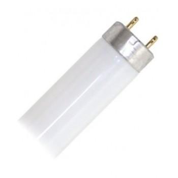 Świetlówka LED- T8 18W...
